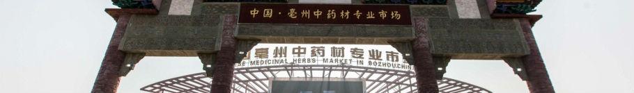 一站式中药材专业市场----亳州药材市场 bzycsc.com